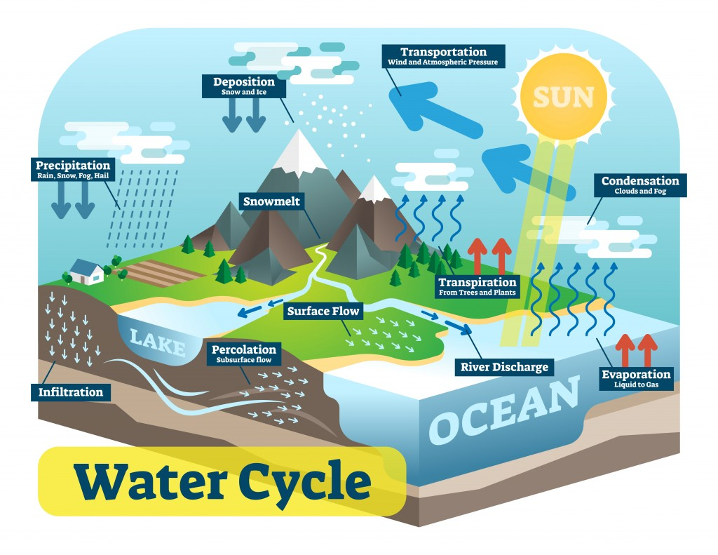 Water cycle graphic scheme, vector isometric illustration with water bodies and geological relief. - Vector(Lightspring)s