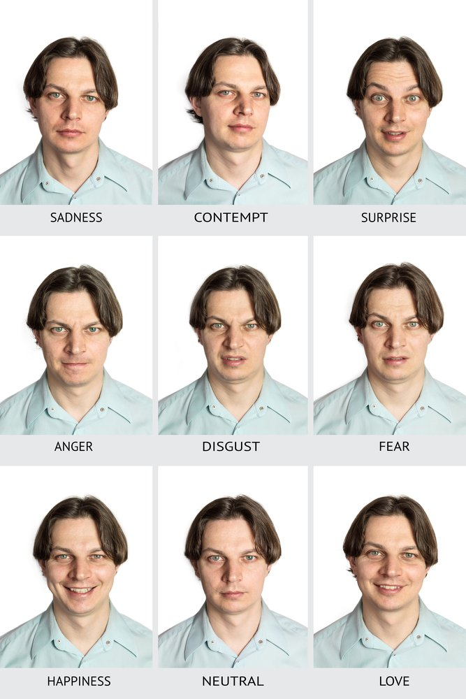 human microexpressions. A Caucasian male showing sadness, contempt, surprise, anger, disgust, fear, happiness, love, and a neutral expression(Plateresca)s
