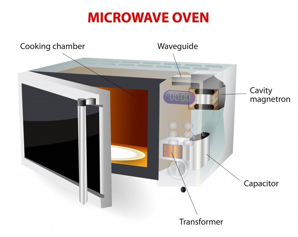 microwave oven. vector diagram. How does this work. microwave oven(Designua)S