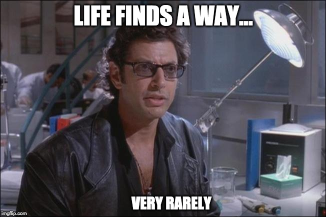 life finds a way meme