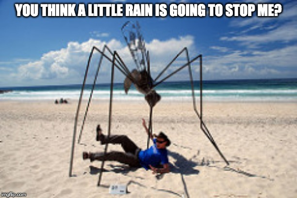 you think a little rain is going to step me meme