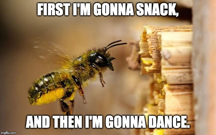 first i'm gonna snack meme