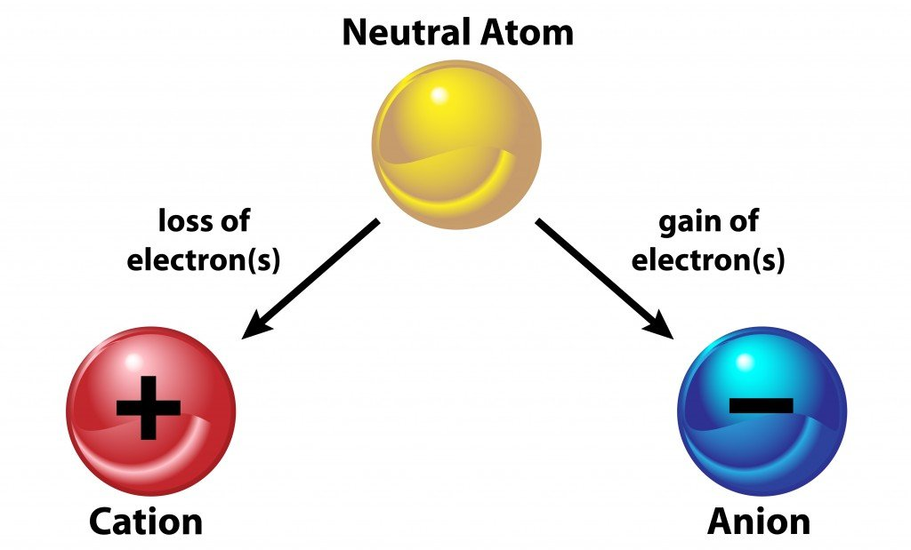 A neutral atom becomes an ion by either losing and electron(OSweetNature)s