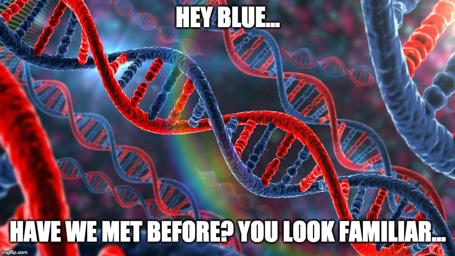 hey blue have we met before meme
