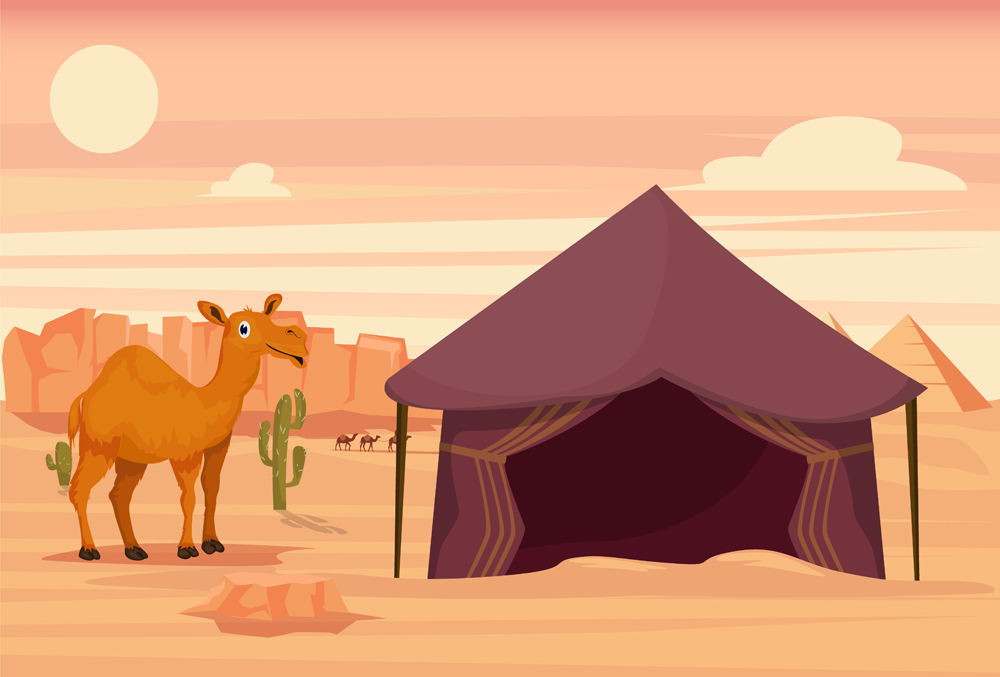 Camel and tent in the desert(Eduard Radu)s