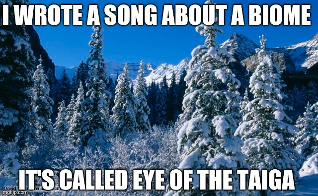 I WROTE A SONG ABOUT A BIOME; IT'S CALLED EYE OF THE TAIGA