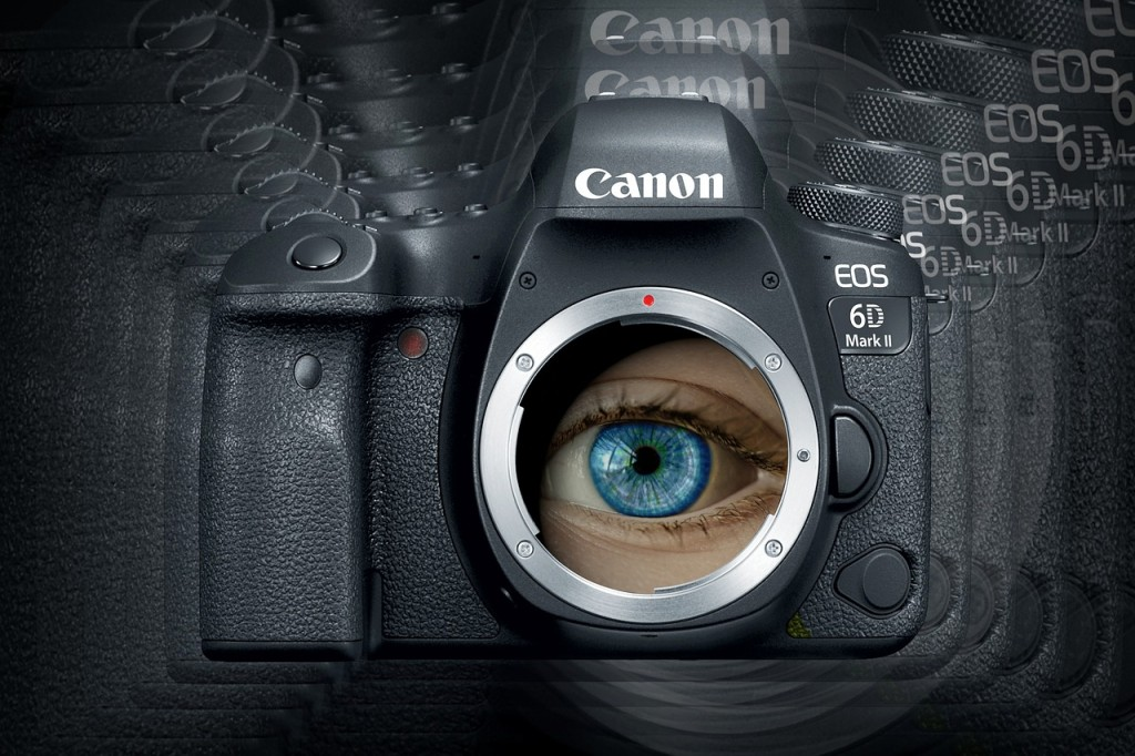 The eye adjusts the light entering in it like the aperture of a camera.