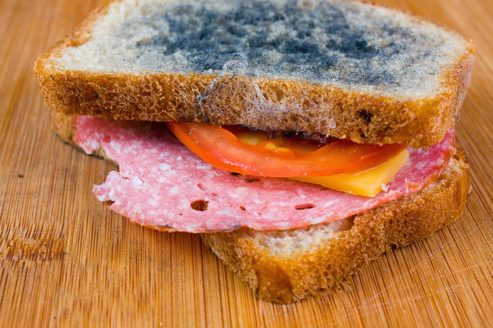 moldy sandwich with salami, tomatoes on a chopping board(Dziewul)S