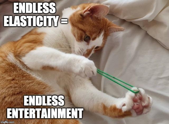 endless elasticity meme
