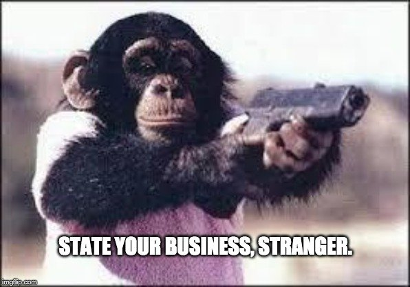 State your business meme