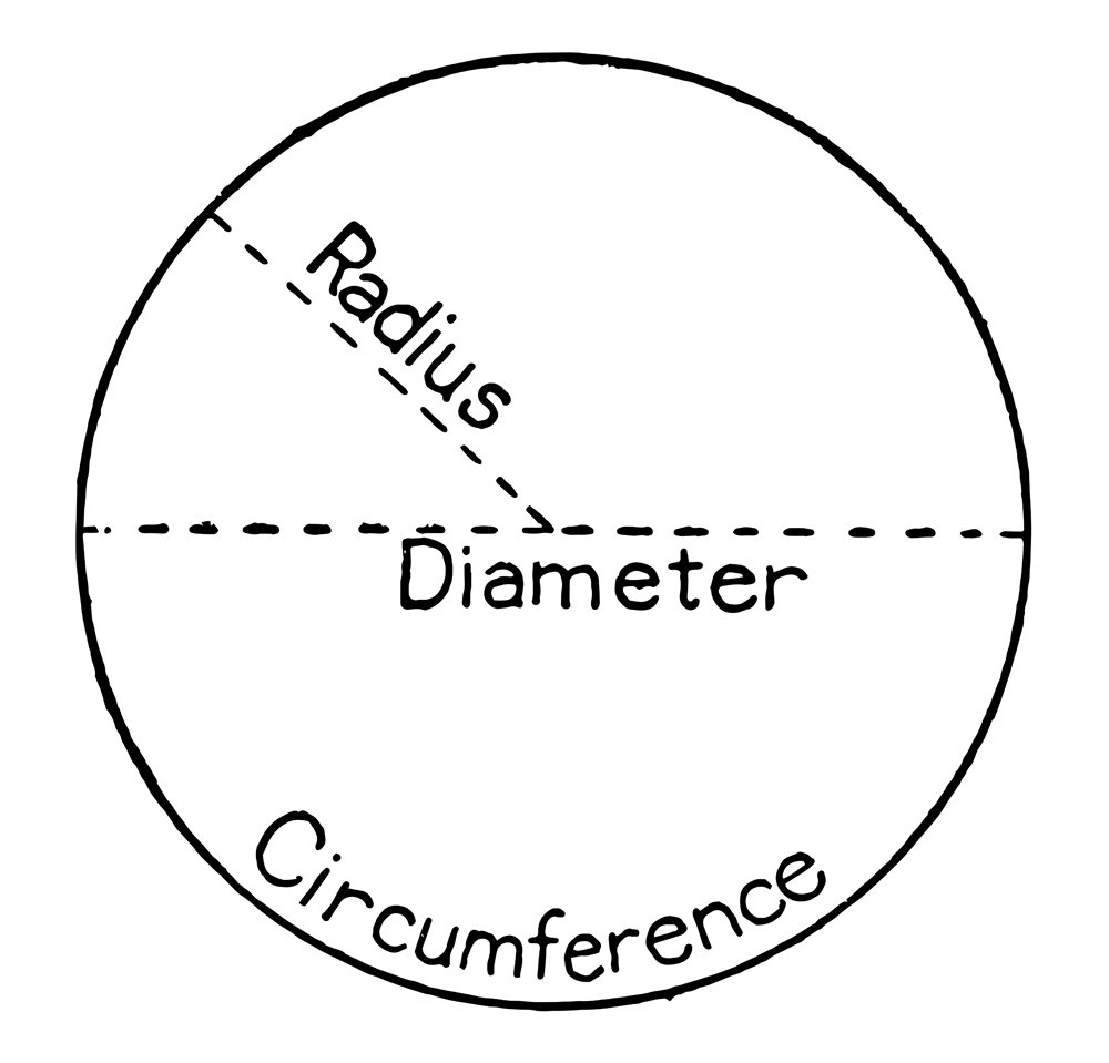 circle with labels for radius, diameter and circumference(Morphart Creation)s
