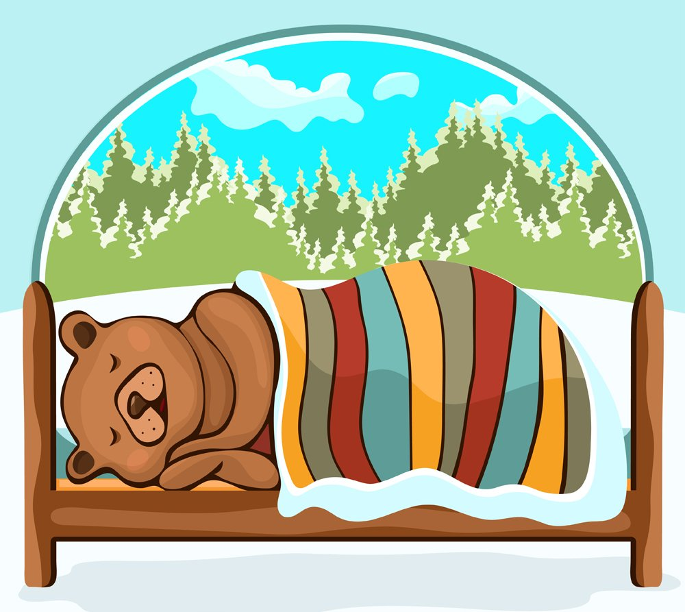 Bear in hibernation hand drawing, cartoon character(Evgeniya Chertova)S