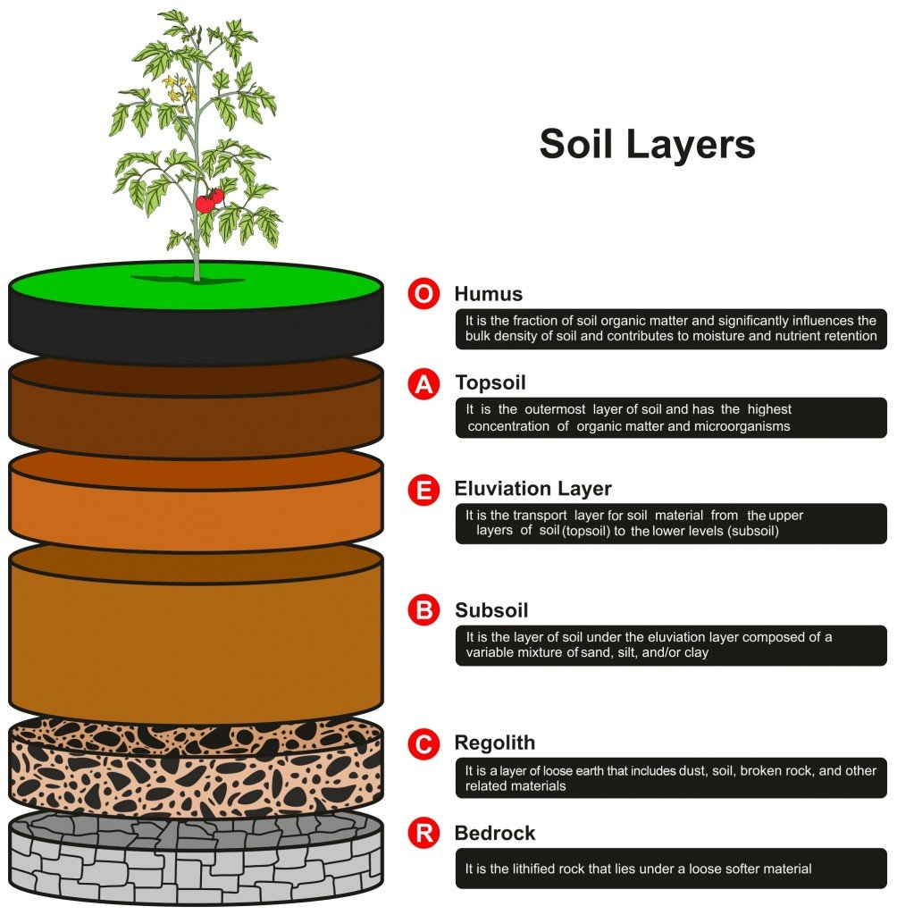 Soil Layers(udaix)S