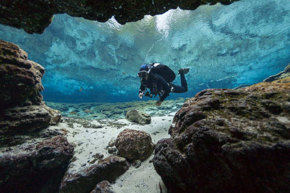 divers underwater caves diving Ginnie Springs Florida USA(Valerijs Novickis)s