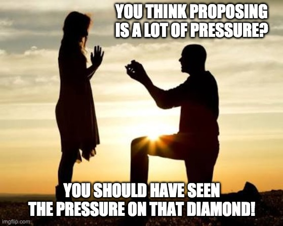you think proposing meme