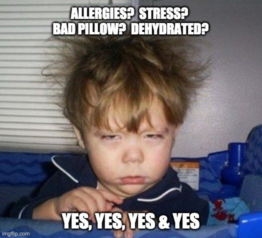 allergies? stress meme