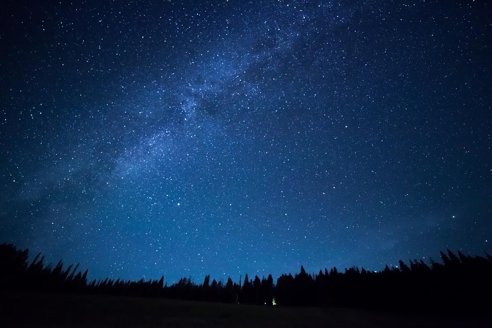 Blue dark night sky with many stars above field of trees(Pozdeyev Vitaly)s