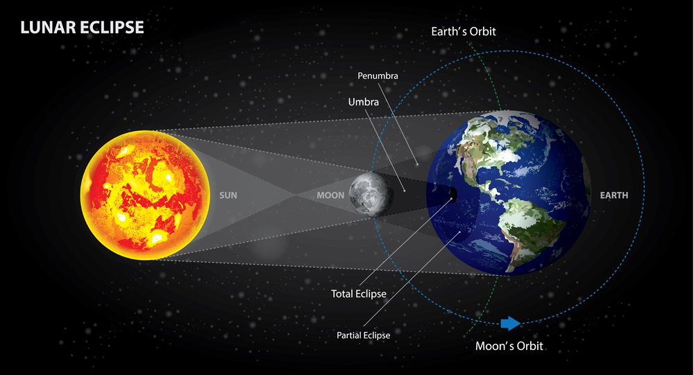 Lunar Eclipses Sun Earth and Moon Vector Illustration - Vector( Natee Jitthammachai)s