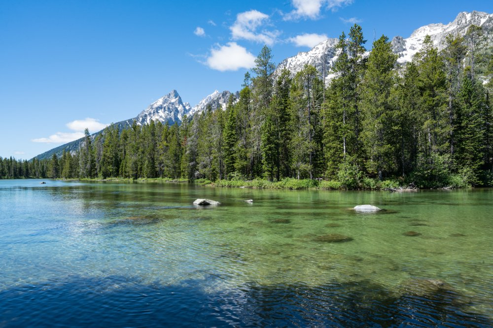 Crystal clear water of String Lake Teton National Park(Paul Brady Photography)S