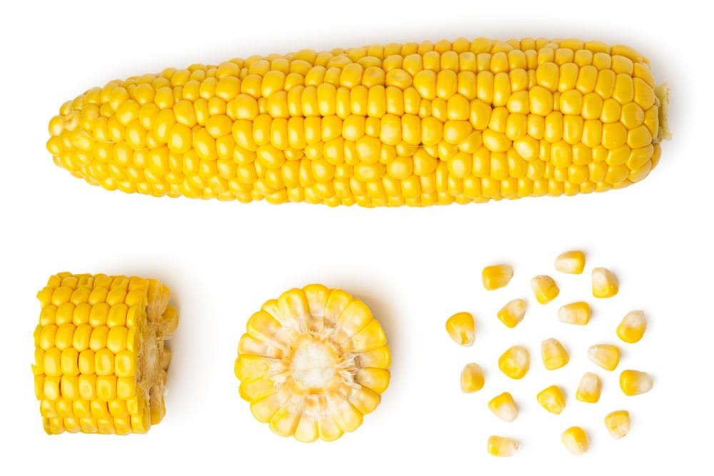The peeled ear of corn(innakreativ)S