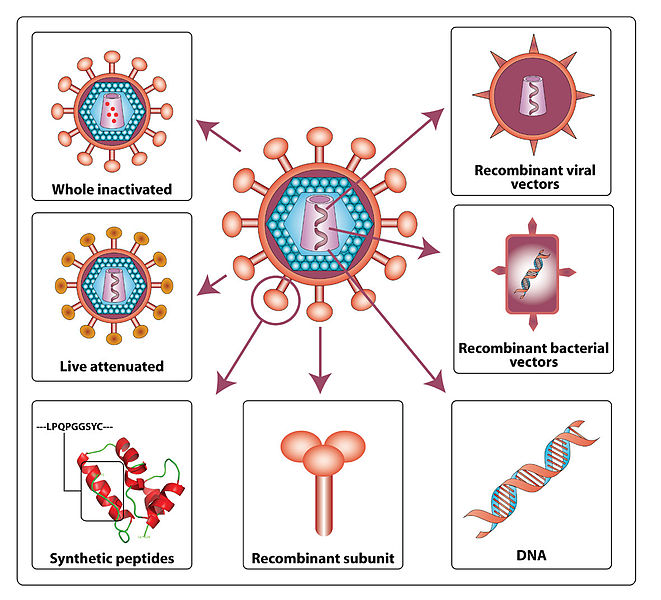 Various approaches for HIV vaccine development