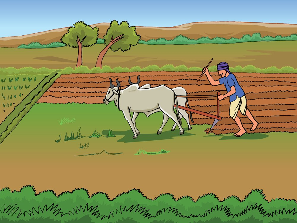 Vector Drawing of Farmer and Farming with bullock(Vishal Jani)S
