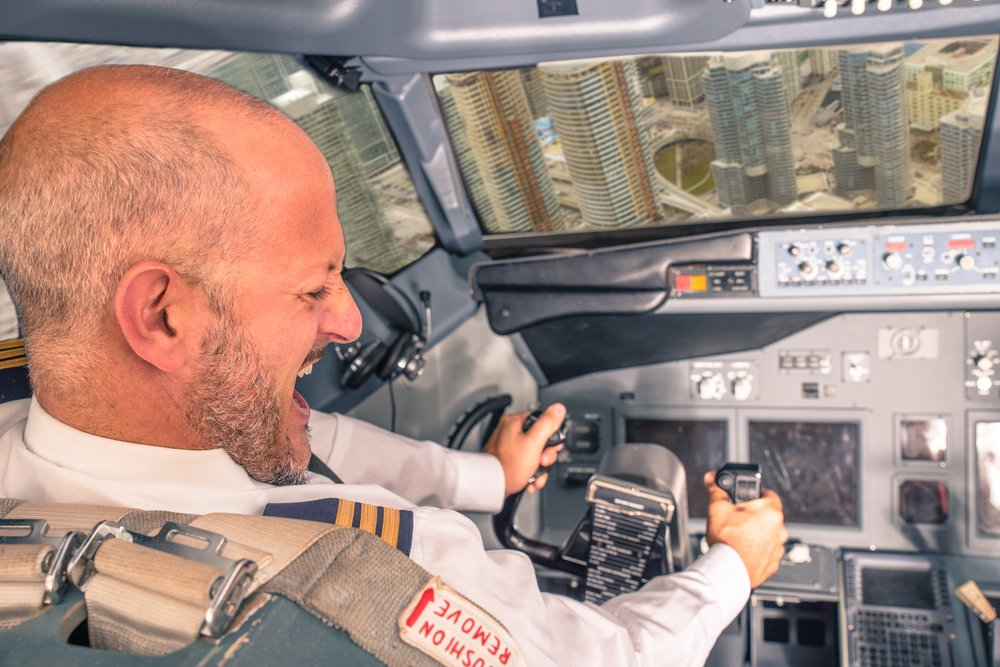 airplane crash, pilot losing control(oneinchpunch)s