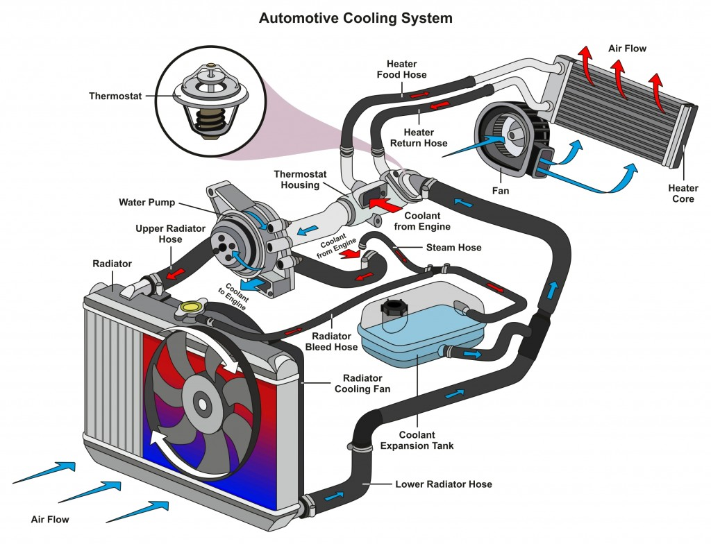 Automotive Cooling System infographic diagram showing process(udaix)s