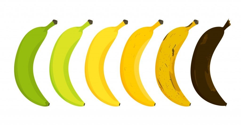 Banana ripeness stages vector isolated(ImLucky)s