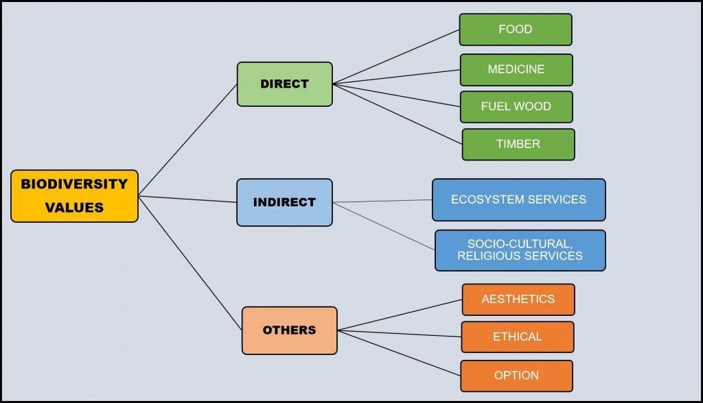 Biodiversity value diagram