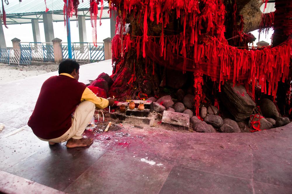 People worshipping the prayer tree at Jatileswar Temple area(Creativesam)s