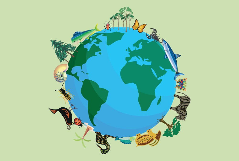 Planet earth with animals and plants for biodiversity(Monphoto)S