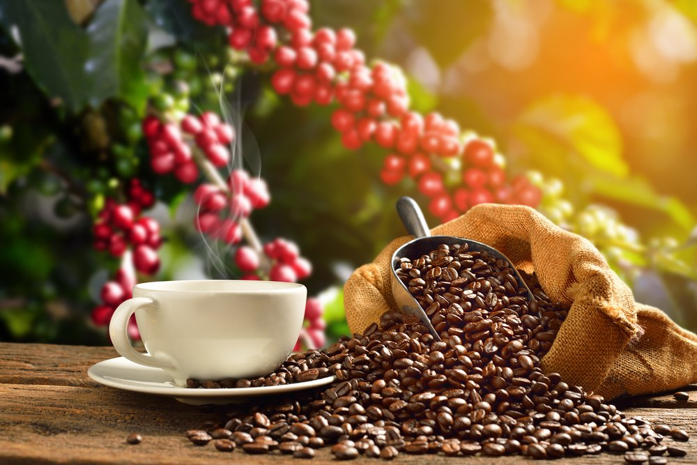 Cup of coffee with smoke and coffee beans in burlap sack on coffee tree background(amenic181)s