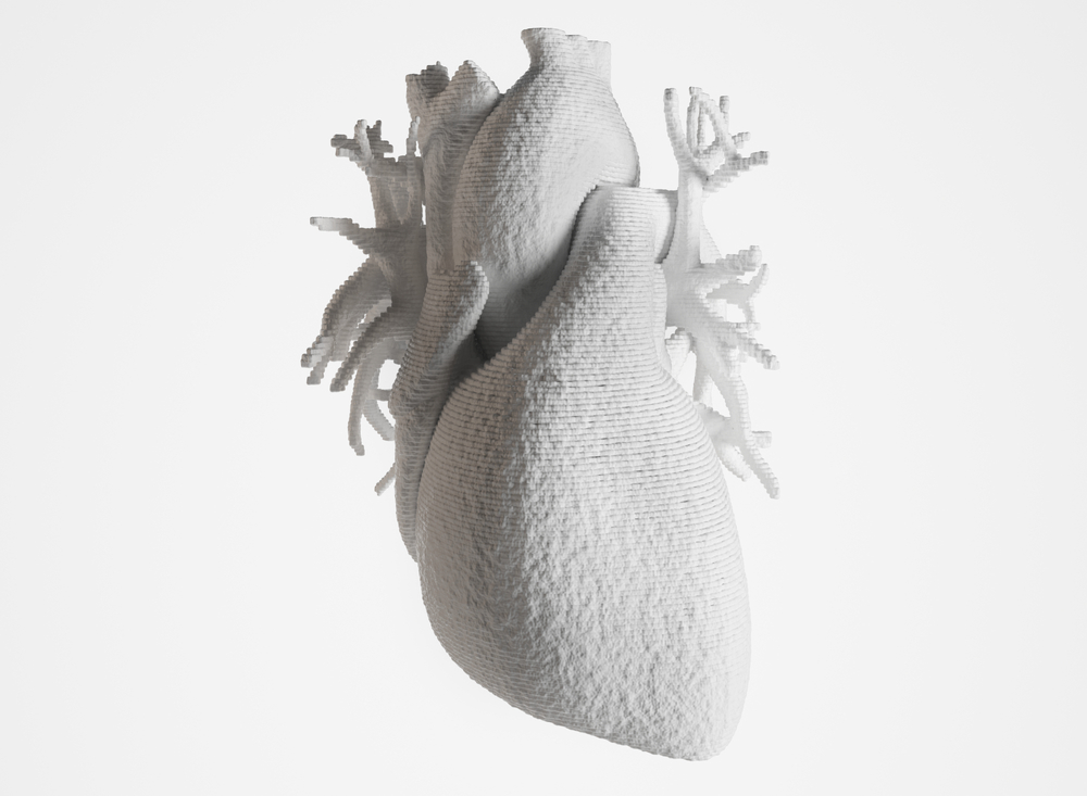 Bioprint of a heart, 3D printing of a heart(Crevis)s