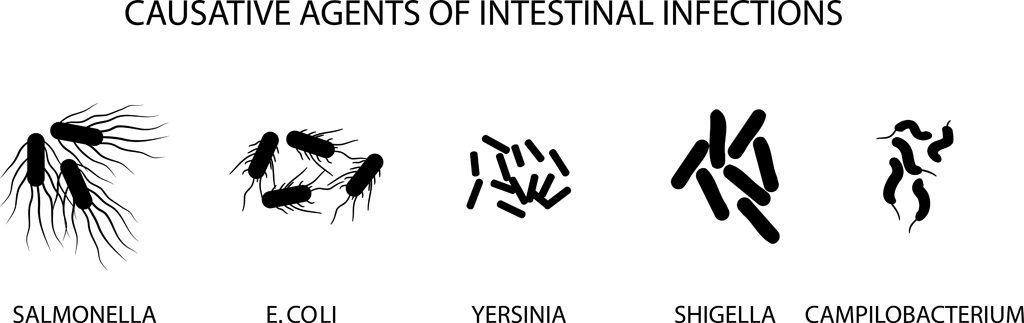 ILLUSTRATION OF CAUSATIVE AGENTS OF ACUTE INTESTINAL INFECTIONS(Artemida-psy)s