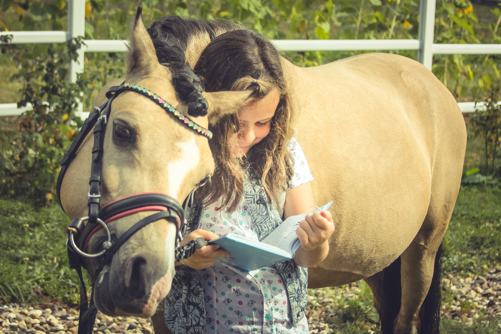 The girl shows welsh pony an interesting lesson in the book(patrikteam)S