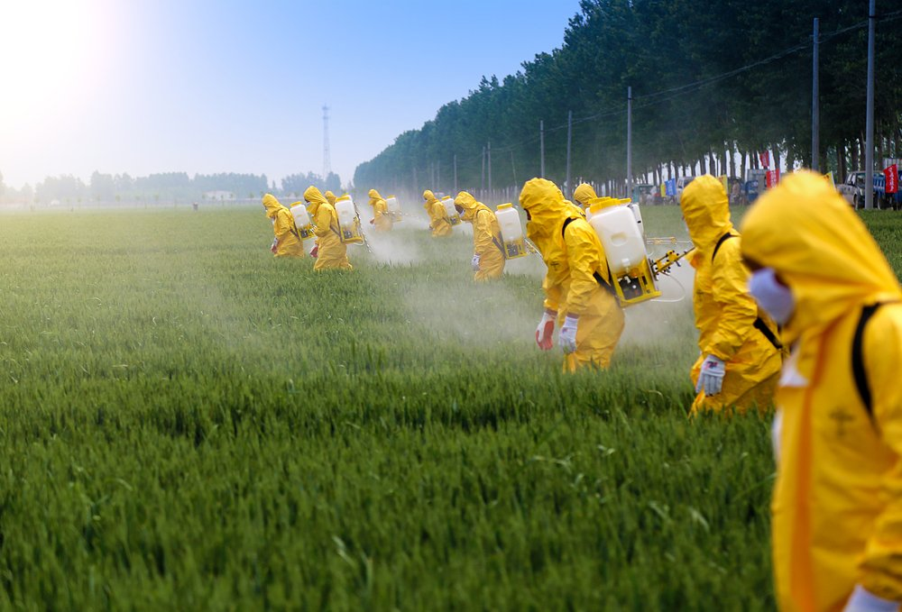 farmers spraying pesticide in wheat field wearing protective clothing(Jinning Li)S