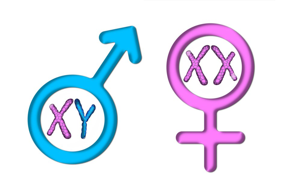 Color graphics with white background, pink female symbol, and blue male symbol with X and Y chromosomes(saeid yaghoubi)s