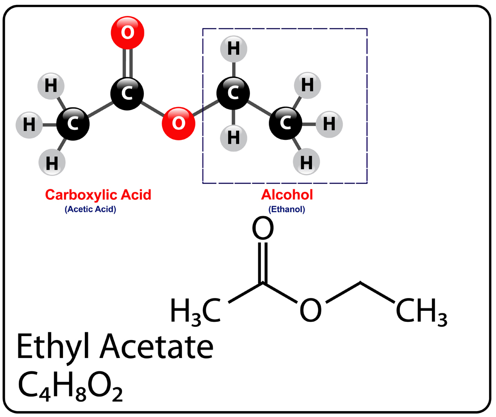 Ethyl Acetate Molecule Structure(gstraub)s