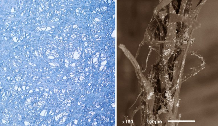 Cross-linking fibers of cellulose & Frayed cellulose fibers after undergoing mechanical stress