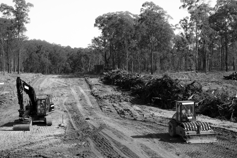 Land clearing for more suburban homes. Loss of biodiversity and habitat(Bellamaree)S