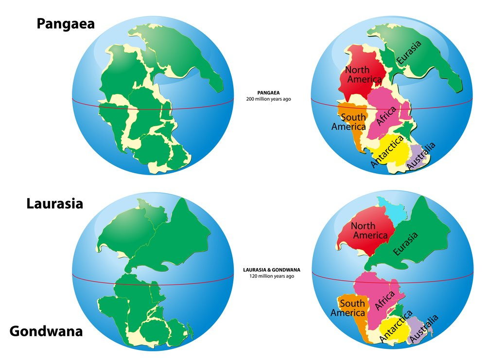 Was the supercontinent that existed during the Paleozoic and Mesozoic eras(Designua)s