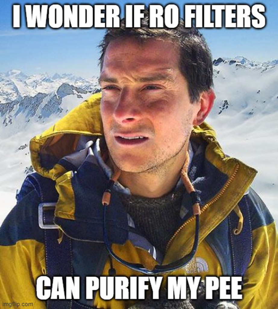 i wonder if ro filters meme
