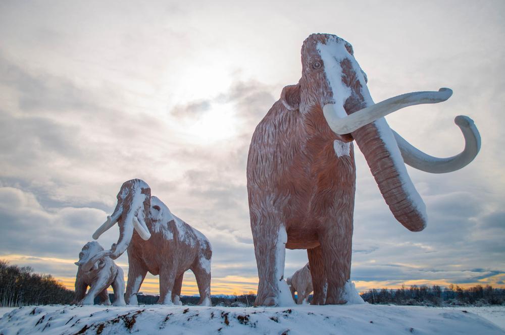 Bohorodchany, Ukraine - Feb. 06.2020. A group of mammoths(Svitlyk)s
