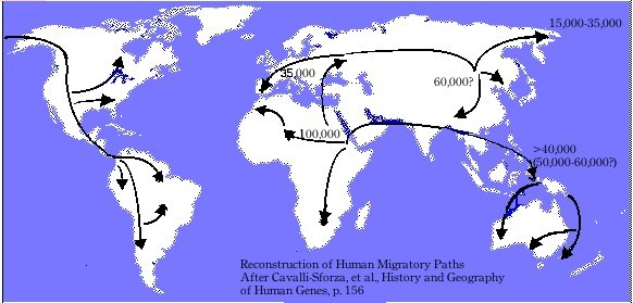 Cavalli-Sforza Human Migration Paths