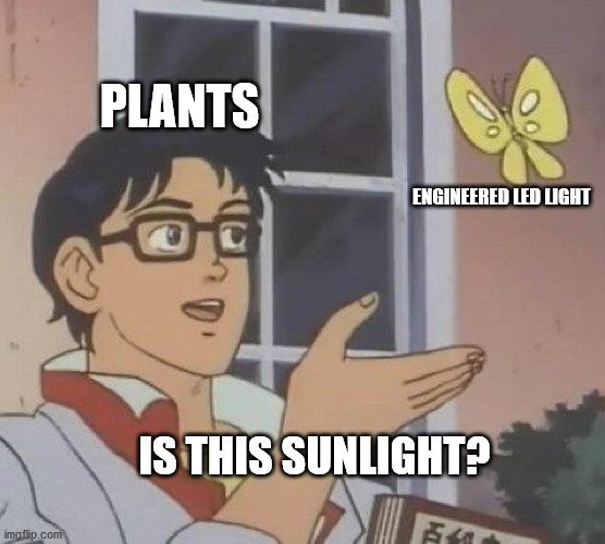 ENGINEERED LED LIGHT meme