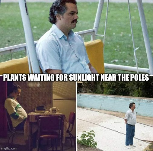 PLANTS WAITING FOR SUNLIGHT NEAR THE POLES meme