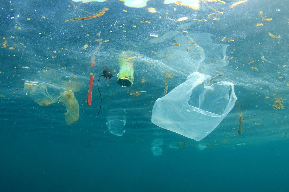 Plastic pollution in ocean(Rich Carey)s