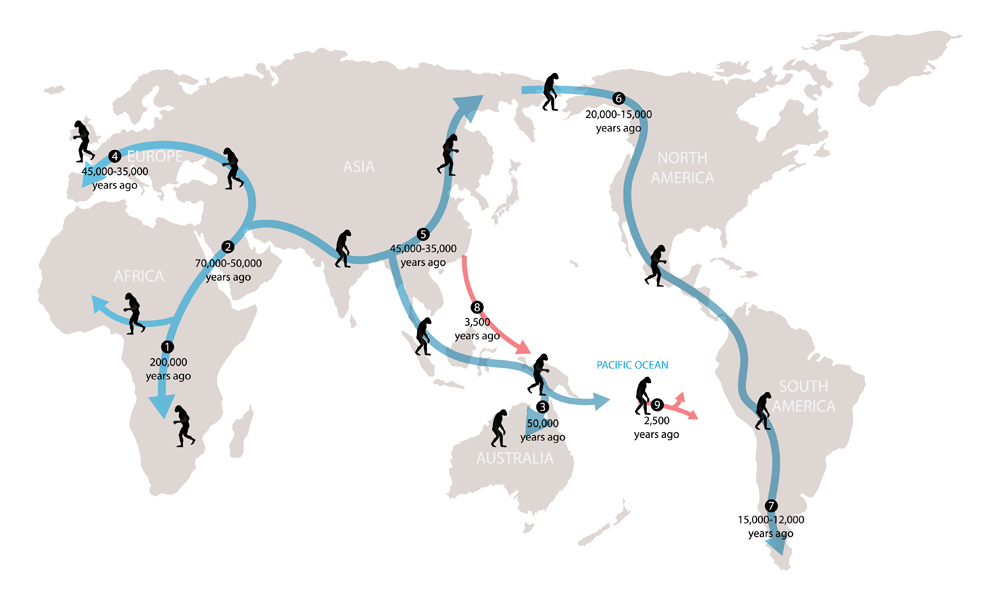 illustration of biology and historty, History of human migration(Nasky)S