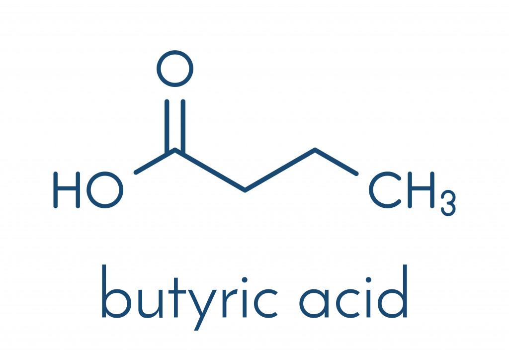 Butyric acid(StudioMolekuul)s